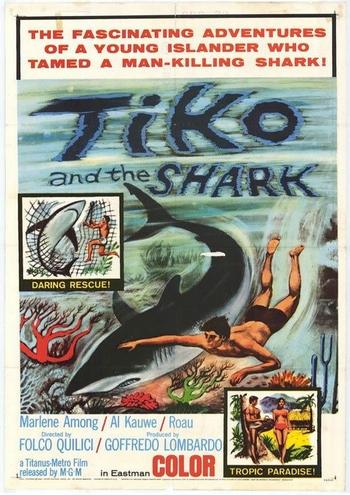 tiko et le requin
