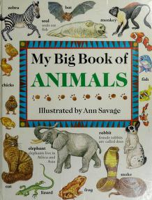 Cover of: My Big Book of Animals (The My Big Book Series) | Jenny Vaughan